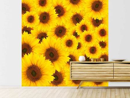 Fototapet A Bouquet Sunflower