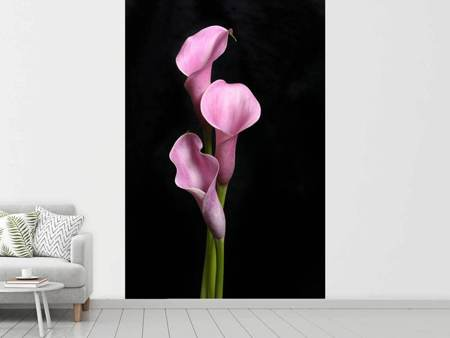 Photo Wallpaper 3 Purple Callas