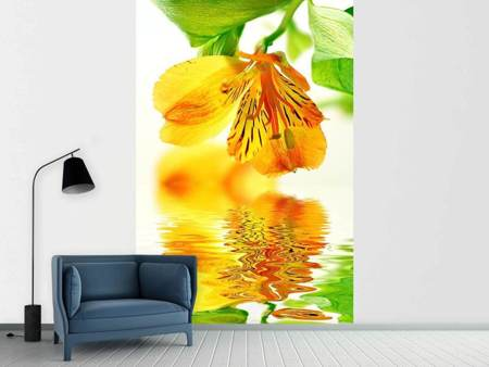 Photo Wallpaper Flowing Orchid Flower