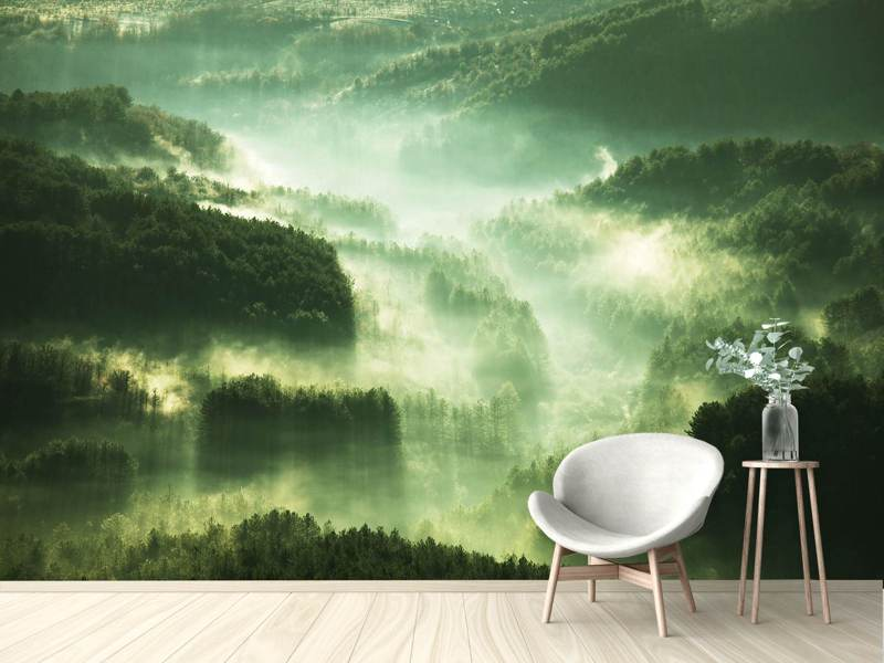 Photo Wallpaper Over The Woods