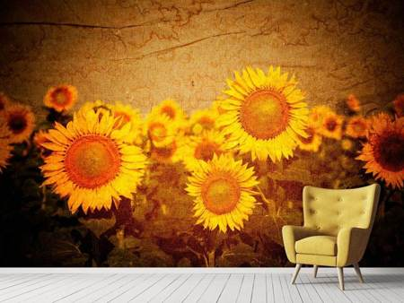Fototapet Retro Sunflower