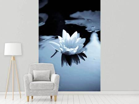 Fototapet Black And White Photograph Waterlily