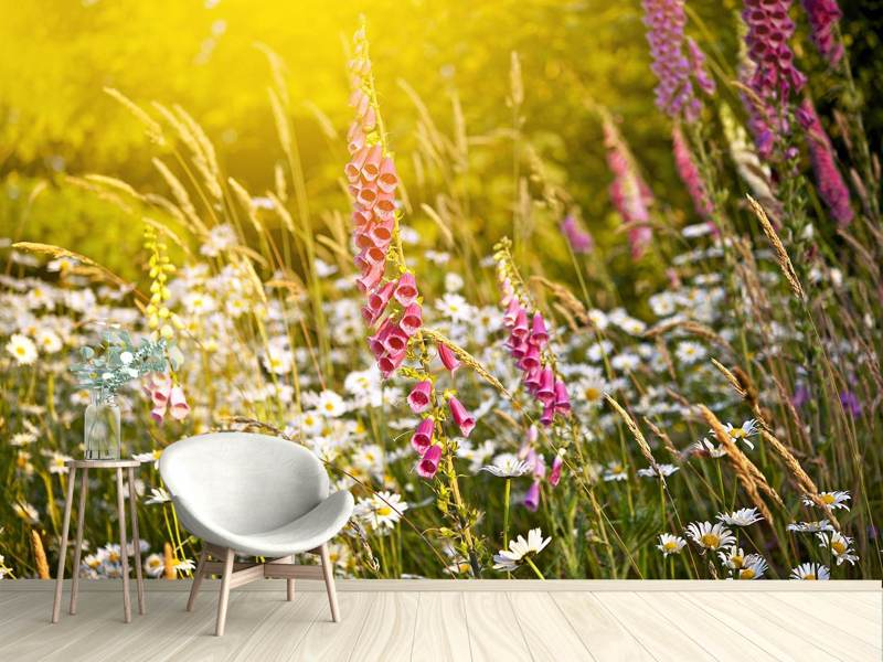 Photo Wallpaper Summer Flower Meadow